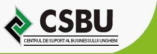 CSBU русский блог