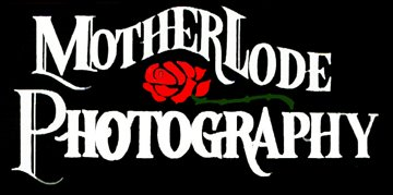 Motherlode Photography