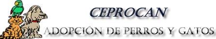 ceprocan_banner