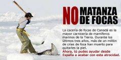HAY QUE LUCHAR PARA LA MATANZA TERMINE DE UNA VEZ!!!