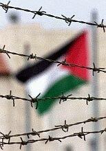 Freedom Palestina!