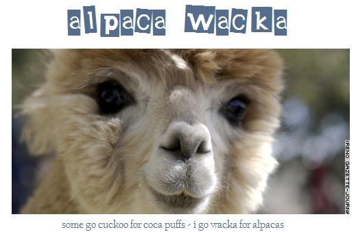 Alpaca Wacka