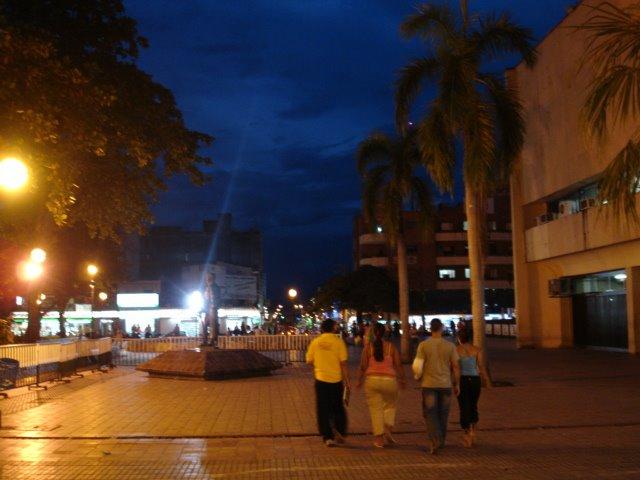 Parque Santander Neiva - Huila