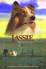 Quien no recuerda a la legendaria LASSIE!