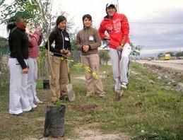 Plan de Forestación Urbana y Semiurbana
