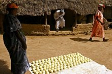 Fotografias de José Bacelar. Cobertura do Projecto de Micro-crédito. Gabú, Guiné-Bissau. 2006