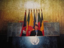 Mr. Lamjav in General Assembly at United Nations