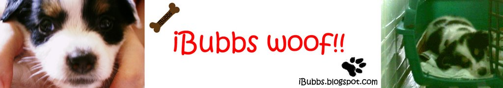 iBubbs woof!