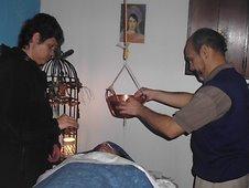 terapias de Ayur Veda