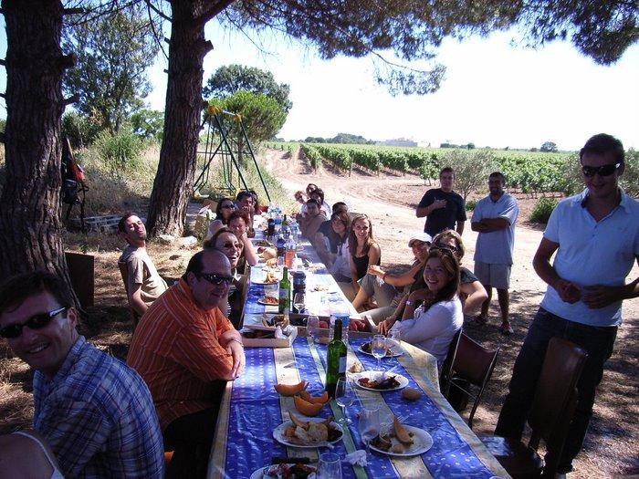 déjeuner dans le vignoble du Mas Nogues