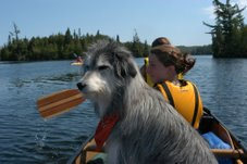 Family canoe trip in Boundary Waters