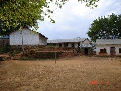 Satya Shila School
