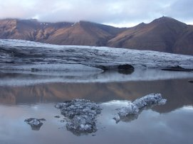 Gletscherkrokodile