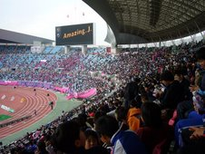 Cerezo Osaka Fans