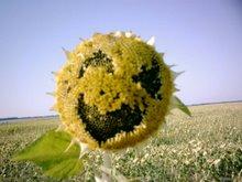 La natura ci sorride!!!