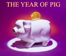 HAPPY NEW YEAR of PIG !!!