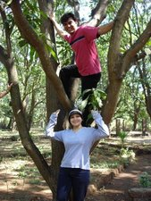 Tree Climbing at Rivertrail Eco-camp