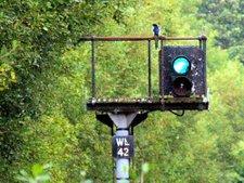 Sutton Park Line