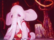 الفيل فى حسن قرن الفول