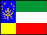 A Bandeira da UDT