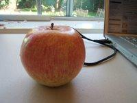 manzana nerviosa