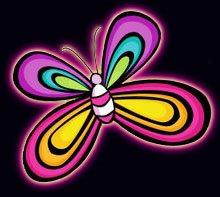 shweeeeet butterfly