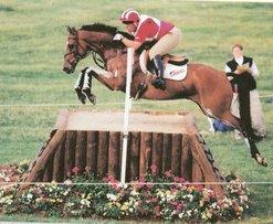 Buck Davidson and Fence 2, 2006