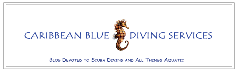 Caribbean Blue Diving Services