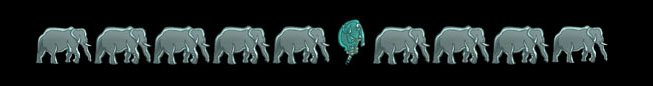 dante elefante