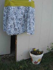 skirt 2007