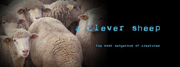 A Clever Sheep