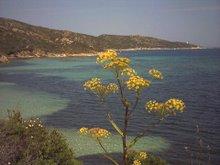 Un angolo della Corsica