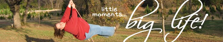 little moments....BIG LIFE!
