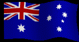 Koalas and Turtles Flags