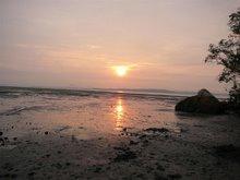 Chek Jawa sunrise