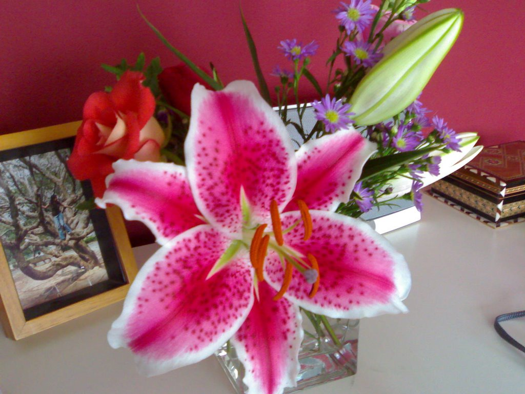 Neha narula a really pretty flower arrangement a really pretty flower arrangement mightylinksfo