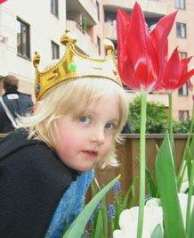 Min Prins