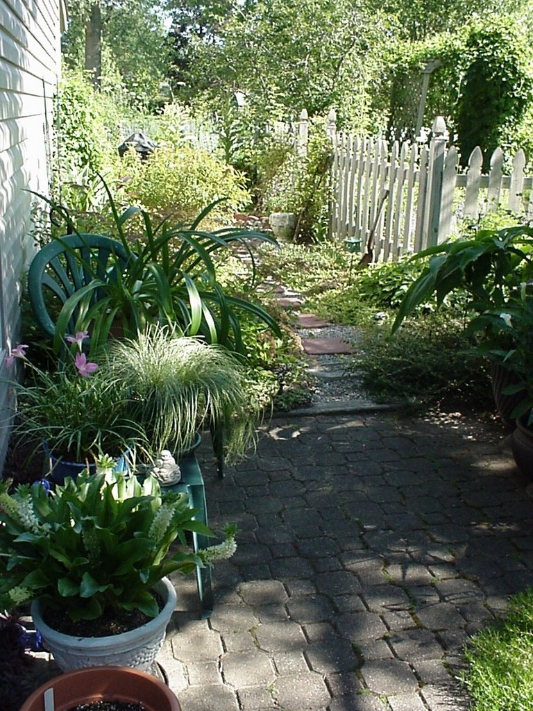 a garden path