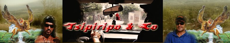 Tsipiripo & Co