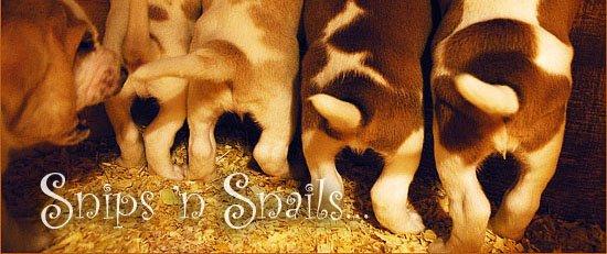 Snips 'n Snails...