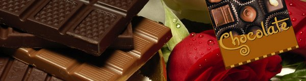 Chocolate... The Perfect Food...