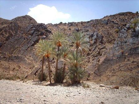 دولة بلوشستان Gse_multipart47496