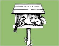 chickadee & squirrel