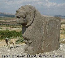 Lion of AYIN DARA near AFRIN