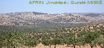 Village of MISK near Afrin