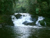 Cachoeira do Sagüi