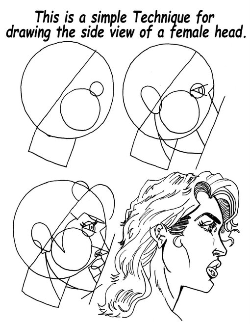 Female Face Side View Tutorial.