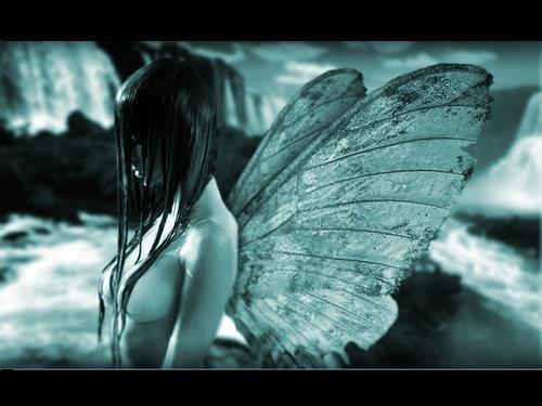 ¤ Mariposa Dependiente ¤