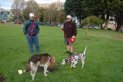 Image of Muki and Stormy in Duboce Park