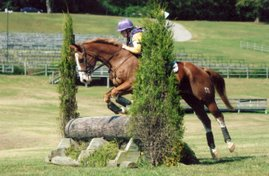 Holly and Good Willing, Middle Tennessee Pony Club Horse Trials